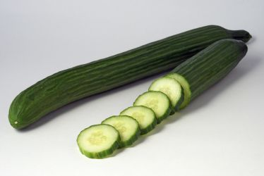 English or hothouse cucumber