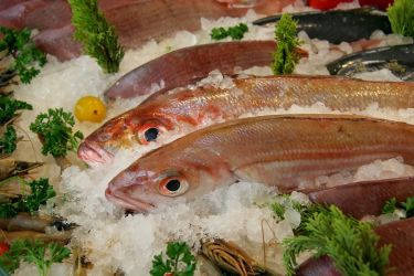 Make sure your fish are on fresh ice, not melting ice or laying in water or water and ice....see the eyes on these? They look good...