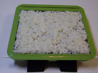 Evenly spread sushi rice over nori to level even with training frame...