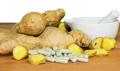 Ginger root and medicines made from ginger