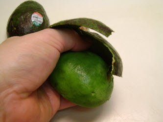 Peeling skin off of avocado