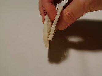 Sliced lotus root